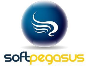 Soft Pegasus - ERP